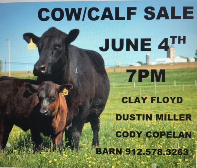 Cow and Calf Sale